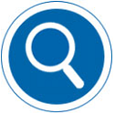 Search for a council service